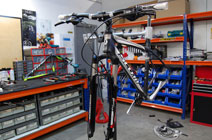 Scott Bikes technical service